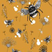 bee, mustard, nature, botanical drawing