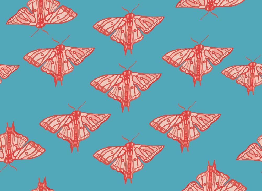 moths, conversational print, licensing, pink, red, blue