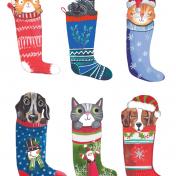 cat, dogs, stockings, christmas