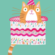 cat, cake, celebration, birthday
