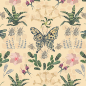 butterfly, pattern, flowers, botanicals, pattern