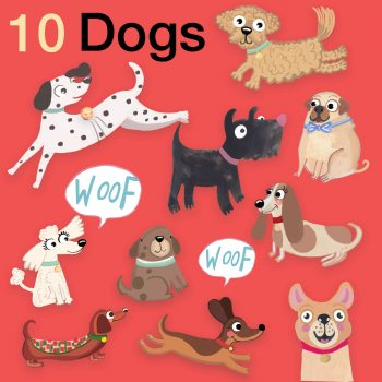 dog, kids book, character design, boardbook